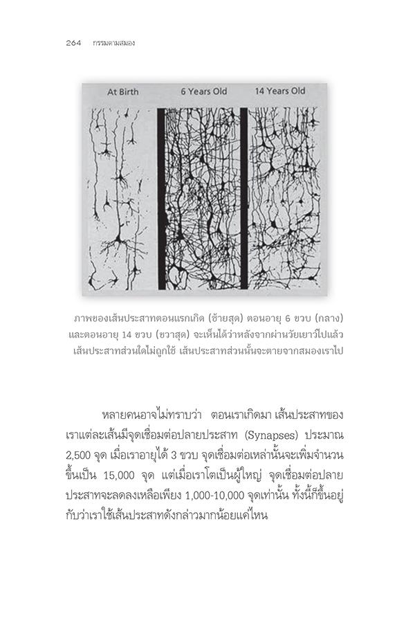 กรรมตามสมอง (PDF)