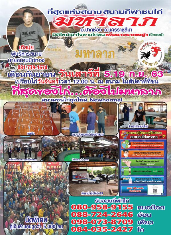 นิตยสาร เพื่อนไก่ชน ปีที่ 20 ฉบับที่ 436 กันยายน 2563 (PDF)