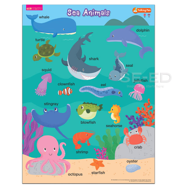 โปสเตอร์พลาสติก Sea Animals (Talking Pen)