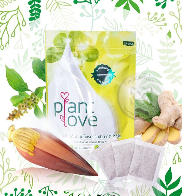 ปลูกรัก Plant Love เครื่องดื่มจากธรรมชาติ หัวปลี ขิง กะเพรา ชนิดบรรจุซองชา รสธรรมชาติ