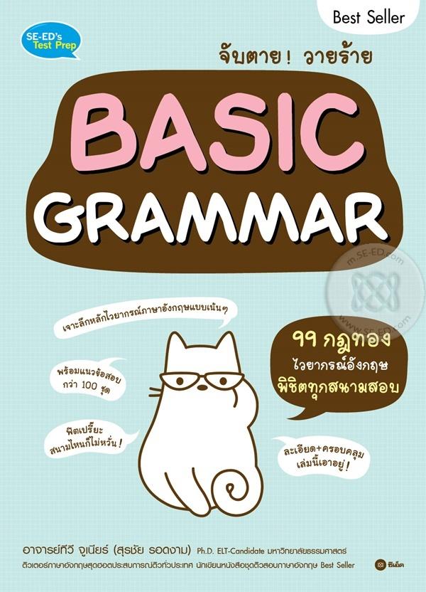 จับตาย! วายร้าย Basic Grammar