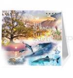 ปฏิทินตั้งโต๊ะสากล The miracle of Life & nature  Hallmark 2563