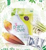ปลูกรัก Plant Love เครื่องดื่มจากธรรมชาติ หัวปลี ตะไคร้ ชนิดผง รสหวาน