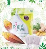 ปลูกรัก Plant Love เครื่องดื่มจากธรรมชาติ หัวปลี ขิง ชนิดบรรจุซองชา รสธรรมชาติ
